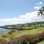 Maui with Baby.  What to see and do!