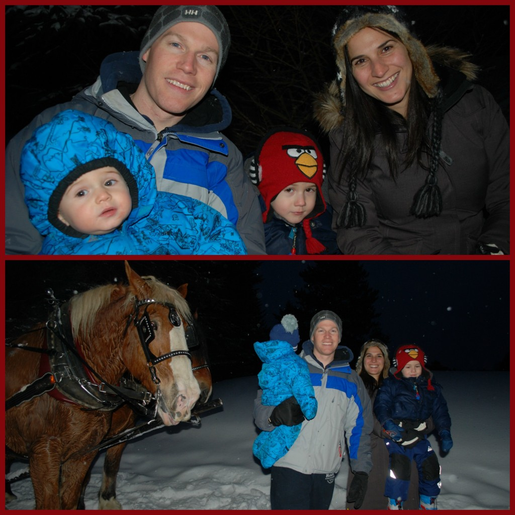 Tremblant Family horse sleigh ride